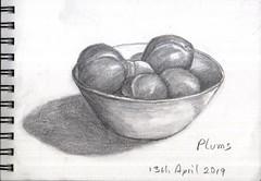 Plums (Hornbeam Arts) Tags: pencil sketch fruitstilllife
