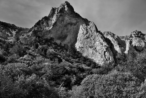 Textures Across a Mountainside (Black & White, Big Bend National Park)