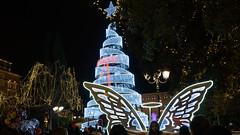 Syntagma Square,  Athens, Greece (Ioannisdg) Tags: sonya7iii ioannisdg syntagmasquare igp christmastree greece athens ioannisdgiannakopoulos flickr atticaregion gr