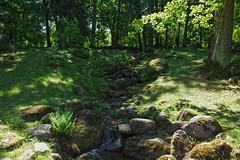 Tallinn Kadriorg (Jaan Keinaste) Tags: pentax k3 pentaxk3 eesti estonia loodus nature tallinn kadriorg jaapaniaed aed garden