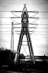 """""""Le monstre de fer"""" (leguen.maxime) Tags: pylone monstre fer electrique loiret loire 2019 hiver"""