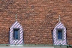 Patterns (halifaxlight) Tags: slovakia bratislava architecture building roof windows tiles shingles gutters patterns historic urban city