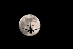 Boeing 737 crossing the MOON (Jarco Hage) Tags: byjarcohage aviation night donker nacht boeing 737 transavia crossing moon maan nederland netherlands full airplane aircraft dark canon jetplane