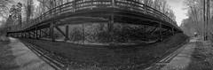 WNC Arboretum (Asheville, North Carolina) (@CarShowShooter) Tags: arden geo:lat=3550083333 geo:lon=8260111111 geotagged unitedstates usa arboretum asheville ashevillenc ashevillenorthcarolina attraction avl beautiful bentcreek bentcreekexperimentalforest botanic botanicalgarden cellphoneimage cellphonephoto cellularphone cultivatedgardens destination forest fredericklawolmsted garden gardens gorgeous groomedtrails natural nature ncarboretum ncarboretumasheville northcarolina northcarolinaarboretum northcarolinaarboretumasheville outdoor pisgahnationalforest samsung samsungcellphone samsungs8 scenery scenic serene sightseeing thenorthcarolinaarboretum thenorthcarolinaarboretumasheville tourism touristattraction trees view walking westernnc westernnorthcarolina wnc wncarboretum δενδροκομείο дендрарий المشجر अर्बोरेटम 수목원 植物园 樹木園