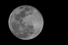 Super Moon 2 19 19 #23 (Az Skies Photography) Tags: super moon supermoon snow snowmoon supersnowmoon night february 19 2019 february192019 21919 2192019 canon eos 80d canoneos80d eos80d canon80d rio rico arizona az riorico rioricoaz sky skyscape skyline arizonasky arizonaskyscape arizonaskyline