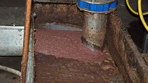 Waste olive pressing