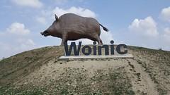 A34 Aire de Woinic-2 (European Roads) Tags: a34 woinic aire autoroute boar