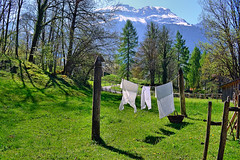 mountain fresh bloomers (Claudia1967) Tags: switzerland ballenberg spring washingline linen fresh clean pure