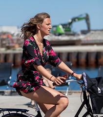 Copenhagen Bikehaven by Mellbin - Bike Cycle Bicycle - 2019 - 0014 (Franz-Michael S. Mellbin) Tags: accessorize bici bicicleta bicicletta biciclettes bicycle bike bikehaven biking copenhagen copenhagenbikehaven copenhagencyclechic copenhagencycleculture copenhagenize cycle cyclechic cycleculture cyclist cykel cyklisme denmark fahrrad fashion fiets people rower street sykkel velo velofashion vélo capitalregionofdenmark dk