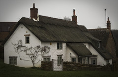 Hook Norton Cottage (Kirstykins_) Tags: cottage thatched cotswolds england britain
