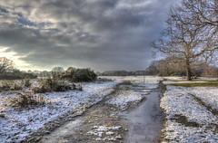 Leyton Flats (ArtGordon1) Tags: hollowpond hollowponds leytonflats london england uk winter january 2019 davegordon davidgordon daveartgordon davidagordon daveagordon artgordon1