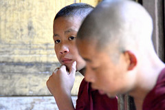 novice monks (Neal J.Wilson) Tags: monks religions buddhism buddist myanmar burma boys travel monestry portraits faces asia
