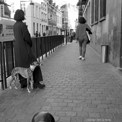 Racé (Spotmatix) Tags: 1232mm belgium brussels camera effects lens monochrome omdem10ii olympus places street streetphotography zoomstd