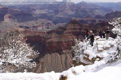 IMG_8624 (patterpix) Tags: grandcanyon arizona snow trees winter canyon storm