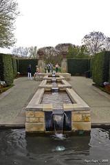 IMG_5599 (Roger Kiefer) Tags: dallas arboretum outdoors beauty nature landscape