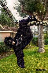 Going Ape for Christmas (Chris C. Crowley) Tags: goingapeforchristmas fraziercrowley gorillasuit costume fun silly comical