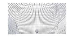 Calatrava im Winter (Hildegard Spickenbaum) Tags: calatrava bahnhof weiss architektur white minimalismus