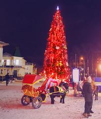 New Year's walk / Новогодняя прогулка (VikTori_kvl23) Tags: russia arkhangelsk people building sky architecture city город cityscape oldcity