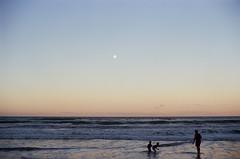moonlights image