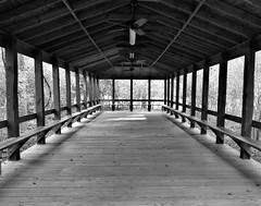 The Pavilion (The Photo Bard) Tags: wood building bw open pavilion jesse h jones humble tx texas park ceilingfan