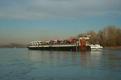 MS DYNAMICA & SL Ro-Ro1 (Lutz Blohm) Tags: msdynamica slroro1 speyer gütermotorschiff roroautotransporter binnenschifffahrt binnenschiffe rhein rheinschifffahrt sonyalpha7aiii sonyfe24105mmf4goss rheinzutal