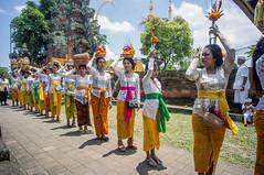 (kuuan) Tags: voigtländerheliarf4515mm manualfocus mf voigtländer 15mm aspherical f4515mm sonynex5n nex5n superwideheliar bali indonesia purapenataransasih pejeng odalan temple festival balinese ceremony ladies procession