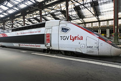 Gare de Lyon - Paris (France) (Meteorry) Tags: europe france idf îledefrance paris garedelyon station gare train sncf lyria 4402 tgv tgvpos recorddumonde worldrecord alstom motrice motorcar august 2018 meteorry