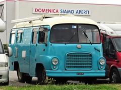 1965 OM Tigrotto Borsani camper (Alessio3373) Tags: om omtrucks omlorry omtigrotto omtigrottocamper omtigrottobus borsani omtigrottoborsani camper caravan campingcar carrozzeriaborsani