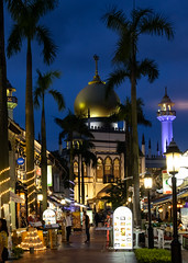 masjid sultan (l e o j) Tags: singapore travel fujifilm xt1 mosque muslim islam islamic palm tree trees bussorah st street night lights evening masjid sultan