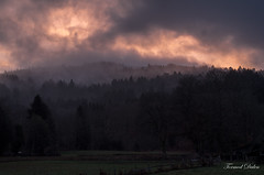 Coucher brumeux / Foggy sunset (Tormod Dalen) Tags: smcpentaxm5014 beaujolais france coucherdesoleil sunset fog brume nature mountain montagne paysage landscape ambiance mood