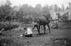 Man and horse (vintage ladies) Tags: blackandwhite vintage portrait people photograph man male