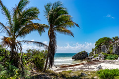 (vroman87) Tags: mexico yucatan tulum maya beach sony sonya7mii sonyalpha bealpha alphacollective