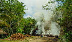 Local habits (feisas) Tags: indonesia local travel adventure colorful clouds green forest smoke fire barrels coconut road motorcycle haze nature landscape outdoor outside loca life fullframe sonya7 java tree