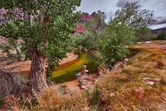 Hiking Day (Stuart Schaefer Photography) Tags: zionnationalpark utah travel travelphotography hiking backroads outdoors day stream trees mountains sky sonya7m3 landscape