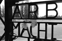 18.06-23 (analogish) Tags: 35mm 135film bw blackwhite dachauconcentrationcampmemorialsite film kodaktrix400 kzgedenkstättedachau leicamp leicasummilux50mmf14preasph reflectaproscan7200 schwarzweiss
