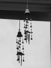 Wind Chime - Reflection (zeevveez) Tags: זאבברקן zeevveez zeevbarkan canon bw fence car frame tv antenna tree reflection wind music