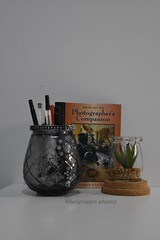My desk (lucyrogersphotography) Tags: desk mydesk penpot plant book photographer