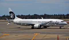 Alaska Airlines 737-800 Old Colors, at Seattle. (Infinity & Beyond Photography: Kev Cook) Tags: alaska airlines aircraft airplane airliner seattle tacoma seatac international airport ksea planes n520as boeing 737 737800 b737