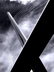 Bridge (Hans Clarijs) Tags: bridge viaduct millau france bw