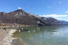 Mont Veyrier @ Lake Annecy @ Plage d'Albigny @ Annecy-le-Vieux (*_*) Tags: 2019 hiver winter march europe france hautesavoie 74 annecy savoie plagedalbigny lakeannecy lacdannecy animal bird swan cygne lac lake sunny