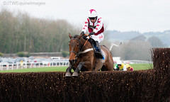 Doitforthevillage-2 (JTW Equine Images) Tags: coral welsh grand national 2018 chepstow rcaecourse hunt jumps racing equine south wales monmouthshire