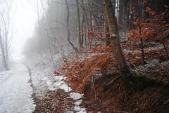 December 30, White Carpathians (hribisko) Tags: nikon d3000 nikkor