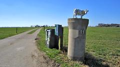 Groningen: Onderdendam cattle farm (Henk Binnendijk) Tags: onderdendam groningen nederland netherlands holland dutch boerderij veehouderij farm cattlefarm landschap countryside platteland