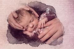 Newborn ❤️ www.zwins-momentmanufaktur.de (zwins) Tags: newbornphotography newbornphotographer newborn babyfotografin babyphotography baby photographer photography henstedtulzburg zwinsmomentmanufaktur childphotography child
