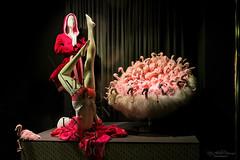 Neueröffnung 5. Stock  (Store Window, Bern) (Rita Eberle-Wessner) Tags: store storewindow schaufenster fenster shop geschäft flamingo flamingos homewear dessous unterwäsche bademantel bathrobe red rot pink shopping luxury luxus schaufensterdekoration design showcase