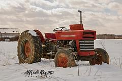 Massey Ferguson (alfredo.rossitto) Tags: sky masseyferguson sigma1750 massey ferguson tractor farm barn snow sigma