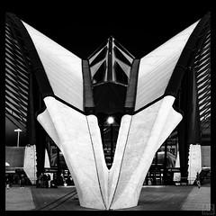 Gare de Lyon-Saint-Exupery (MAICN) Tags: lichter square quadratisch lyon building glass sw dach mono cityscape linien gebäude france light architektur garedelyonsaintexupery bw glas blackwhite monochrome geometrisch lines schwarzweis bahnhof architecture frankreich einfarbig 2019 geometry linesymmetry