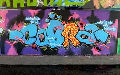 Mssls - Cobra (oerendhard1) Tags: graffiti streetart urban art rotterdam oerendhard maassluis cobra