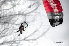 Around the tree 7706 (kathypaynter.com) Tags: eloy eloyarizona eloyaz arizona az parachute parachutes jump jumper jumpers tandem tandemjump