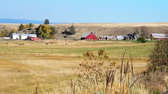 Red Barn (Eclectic Jack) Tags: eastern oregon trip october 2018 rural agriculture farm farming autumn fall mountains irrigation abandoned house structure home